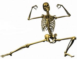 Nutri-Dyn-Skeleton-2-683x526-300x231