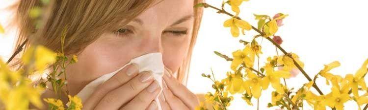 hay-fever_thumb